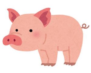 日本では猪年、その他は豚年