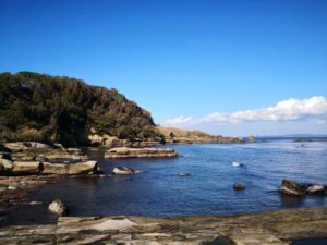 観音崎の海岸