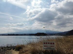 河口湖自然生活館の前からの景色