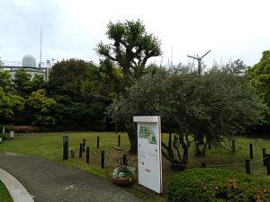 キリンビール 横浜工場(裏側)